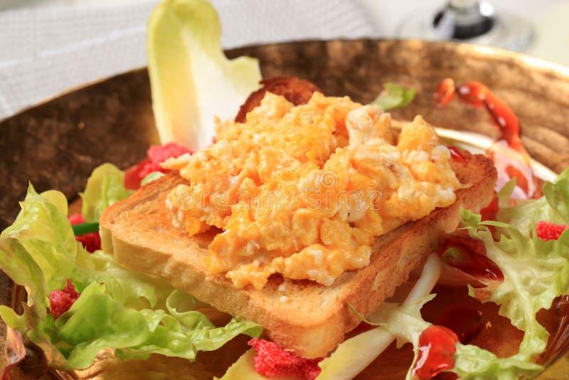 η φρέσκια σαλάτα αυγών ανα&k στοκ φωτογραφία με δικαίωμα ελεύθερης χρήσης