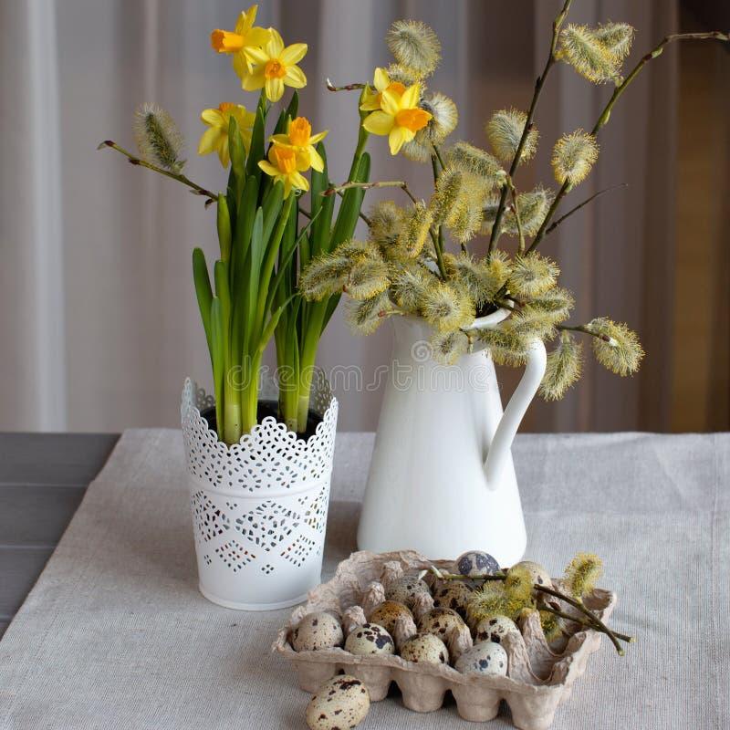 Η φυσική ζωή Πάσχας ύφους ακόμα με την κλήθρα διακλαδίζεται, daffodil βολβοί και αυγά ορτυκιών στοκ εικόνες