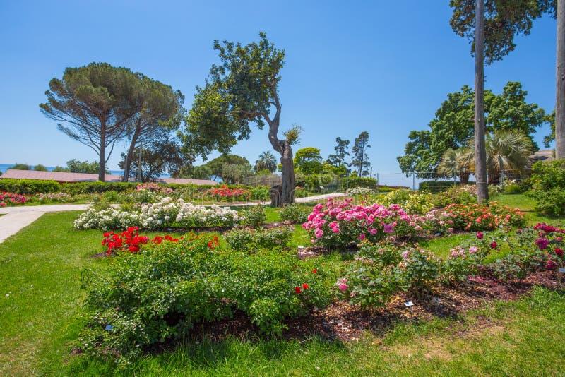 Η φυτεία με τριανταφυλλιές ` IL Roseto ` στη Γένοβα Nervi, μέσα στα πάρκα της Γένοβας Nervi, Ιταλία στοκ φωτογραφία με δικαίωμα ελεύθερης χρήσης