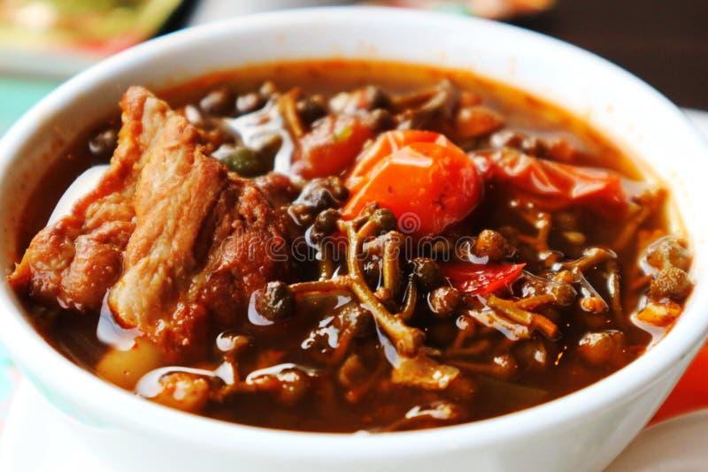 ` Η φυτική σούπα με το χοιρινό κρέας σχίζει ` στοκ εικόνα με δικαίωμα ελεύθερης χρήσης
