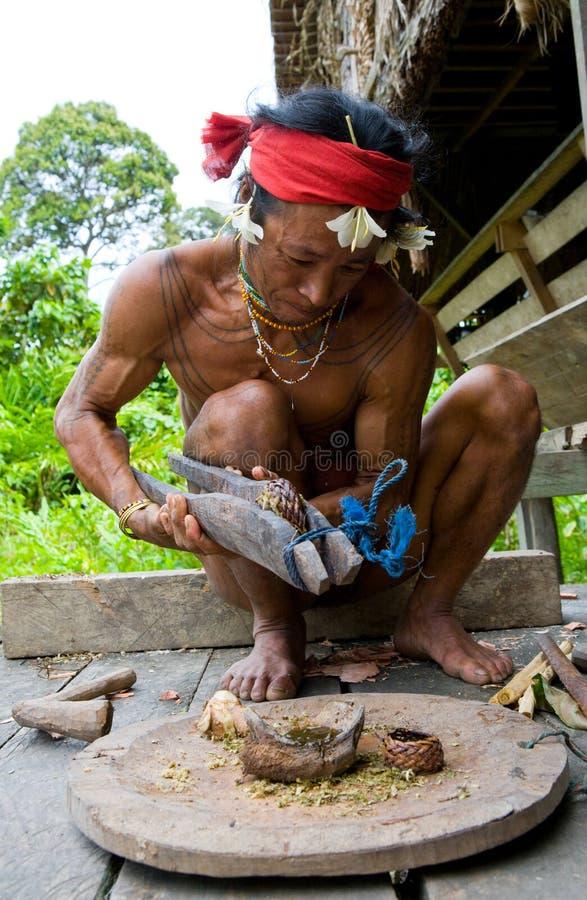 Η φυλή Mentawai ατόμων προετοιμάζει το δηλητήριο για τα βέλη για το κυνήγι στοκ φωτογραφίες