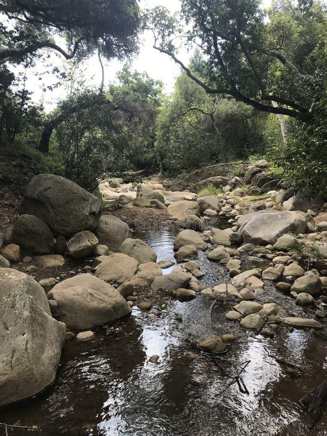 Η φύση έχει κάνει τον κήπο zen της στοκ εικόνα με δικαίωμα ελεύθερης χρήσης