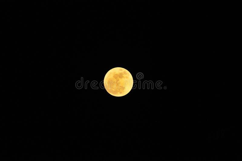 Η φύση της έξοχης πανσελήνου τη νύχτα στοκ φωτογραφία