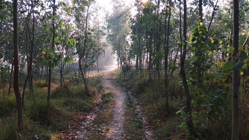 Η φύση τοπίων στοκ φωτογραφίες με δικαίωμα ελεύθερης χρήσης