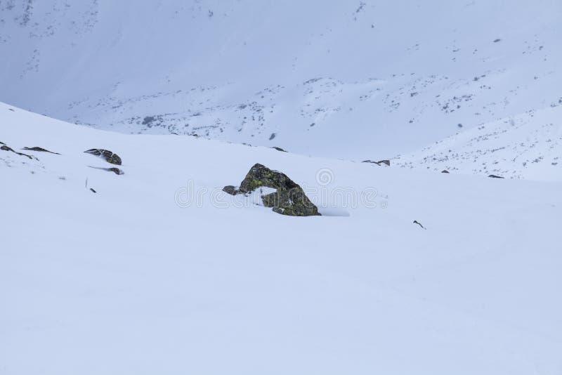 Η φύση των υψηλών βουνών στοκ φωτογραφίες