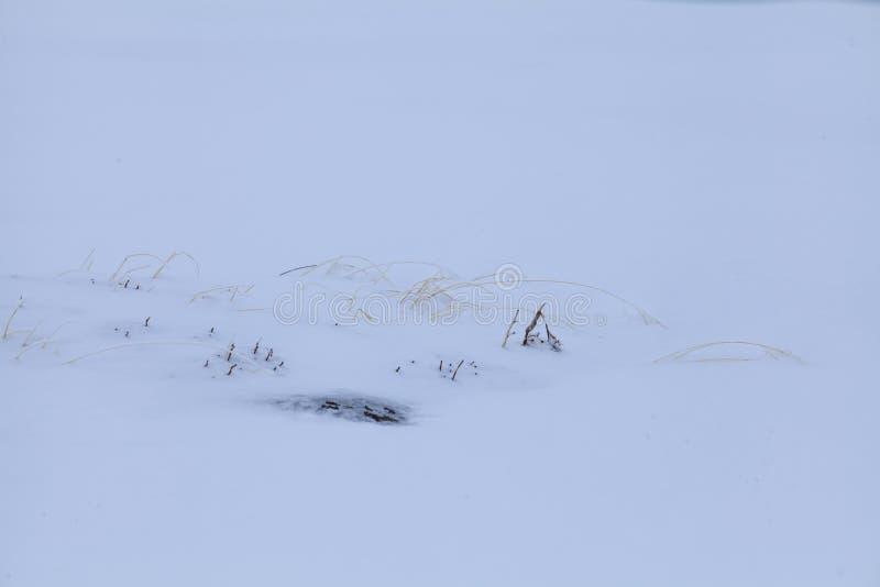 Η φύση των υψηλών βουνών στοκ φωτογραφία με δικαίωμα ελεύθερης χρήσης