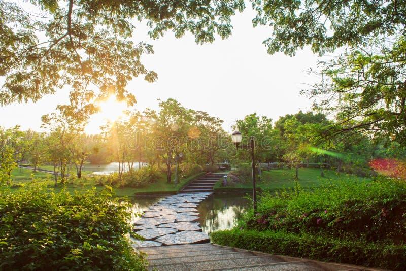 Η χαλάρωση πάρκων στοκ φωτογραφία με δικαίωμα ελεύθερης χρήσης