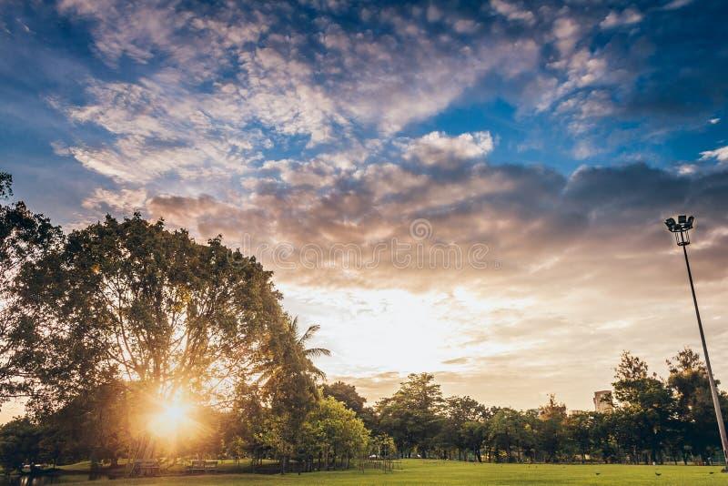 Η χαλάρωση πάρκων στοκ εικόνες