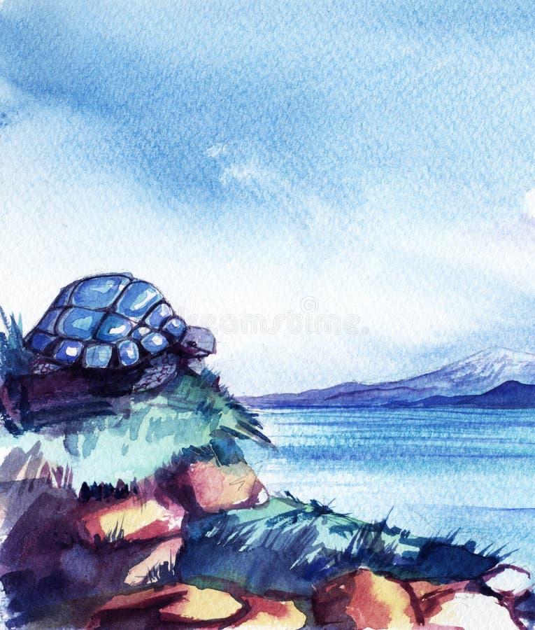 Η χελώνα κάθεται πάνω σε ψηλή χρυσή πέτρα πάνω από γρασίδι στην ακτή της λίμνης του βουνού Βαν Φωτεινός ουρανός νωρίς το πρωί διανυσματική απεικόνιση