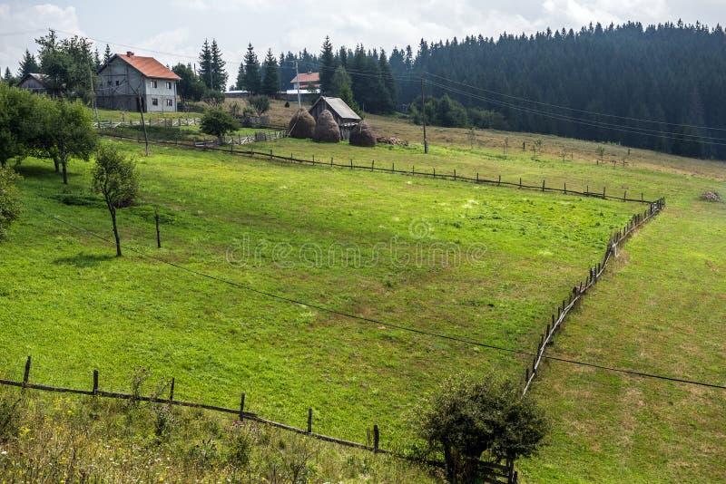 η χορήγηση του συνδετήρα της Βοσνίας περιοχών περιοχής που χρωματίστηκε η Ερζεγοβίνη περιλαμβάνει σημαντικό χαράζει το σκιασμένο  στοκ εικόνες