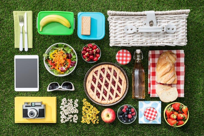 η χλόη γευμάτων αγοριών έχει λίγη picnic μεσημεριού λιβαδιών πίτσα δύο στοκ φωτογραφία με δικαίωμα ελεύθερης χρήσης