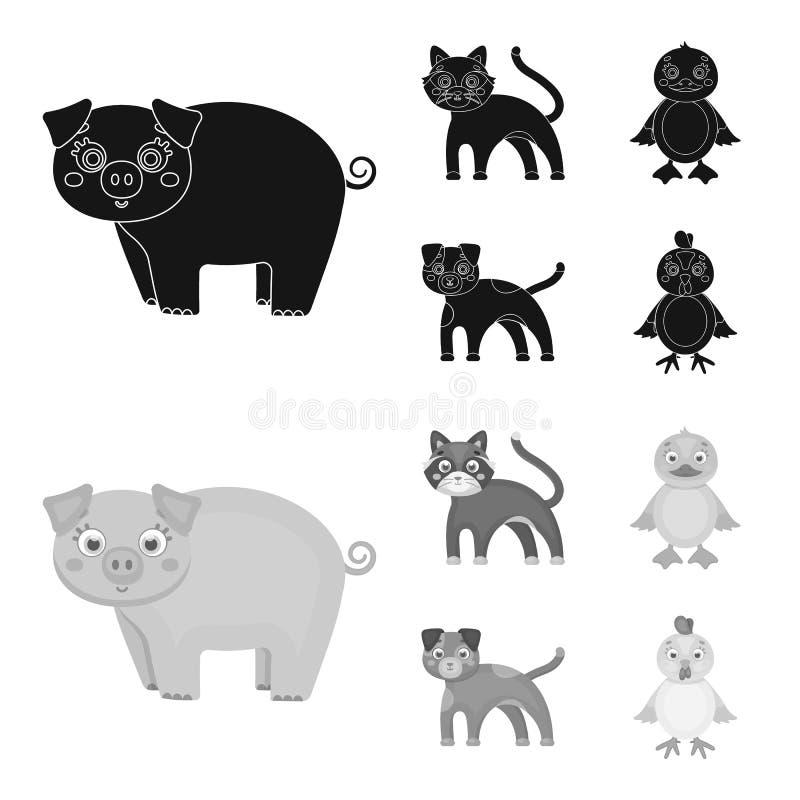 Η ψυχαγωγία, το αγρόκτημα, τα κατοικίδια ζώα και άλλο εικονίδιο Ιστού στο Μαύρο, monochrom ορίζουν Αυγά, παιχνίδι, εικονίδια αναψ ελεύθερη απεικόνιση δικαιώματος