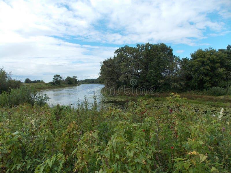 Η όμορφη άποψη της μακριάς δασικής λίμνης με τα δέντρα και της χλόης στην τράπεζα στοκ φωτογραφίες
