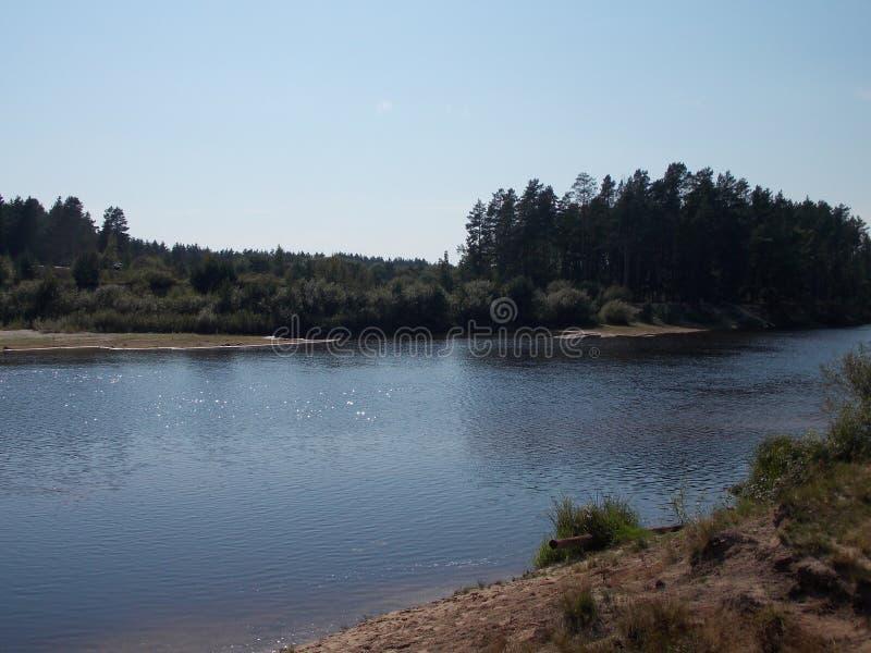 Η όμορφη άποψη των δασικών όχθεων του ποταμού στοκ εικόνες