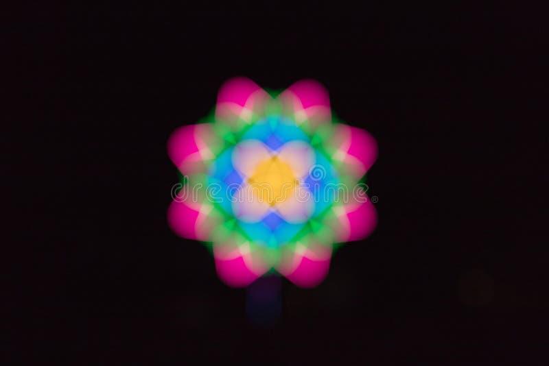 Η όμορφη θαμπάδα των ζωηρόχρωμων φω'των είναι ένα λουλούδι στοκ εικόνες με δικαίωμα ελεύθερης χρήσης