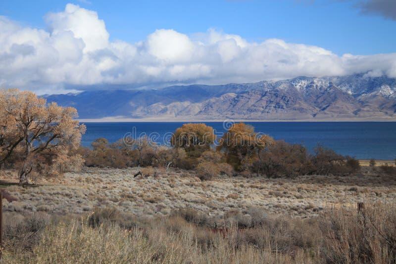 Η όμορφη λίμνη Νεβάδα πυραμίδων στοκ εικόνες