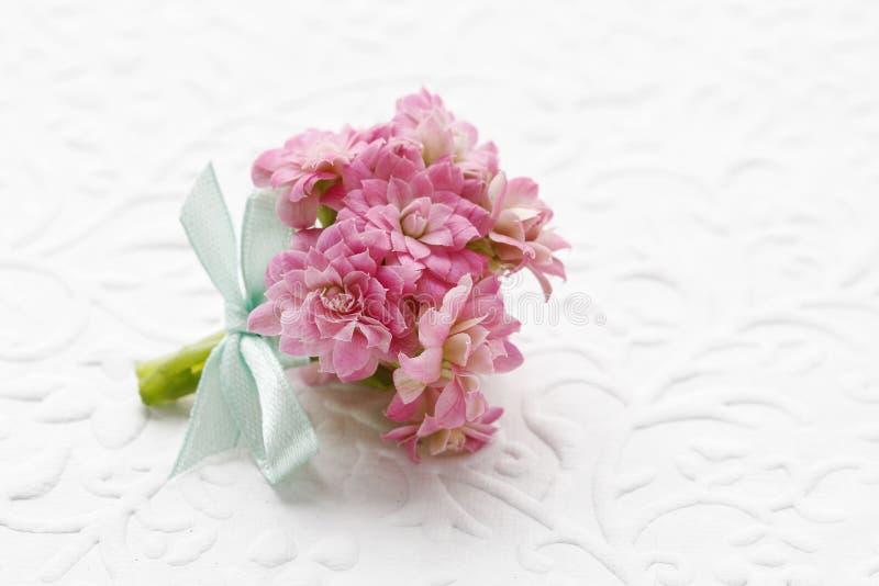 Η όμορφη μικροσκοπική ανθοδέσμη του ρόδινου blossfeldiana kalanchoe ανθίζει το α στοκ εικόνα