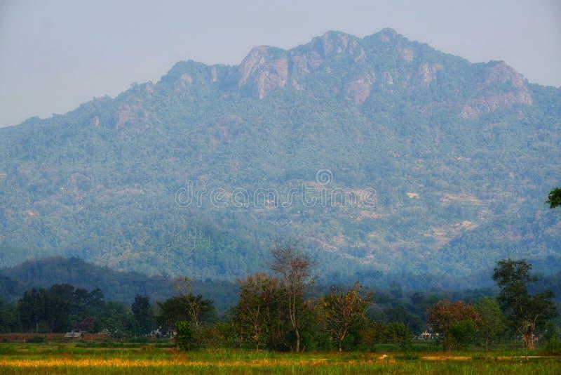 Η όμορφη σειρά βουνών βλέπει από τη μέση του πράσινου τομέα ρυζιού στοκ εικόνες