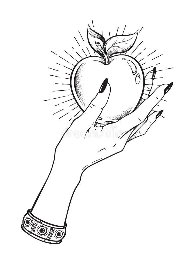 Η Apple στο θηλυκό χέρι απομόνωσε συρμένη τη χέρι τέχνη γραμμών και τη διανυσματική απεικόνιση εργασίας σημείων Αυτοκόλλητη ετικέ απεικόνιση αποθεμάτων