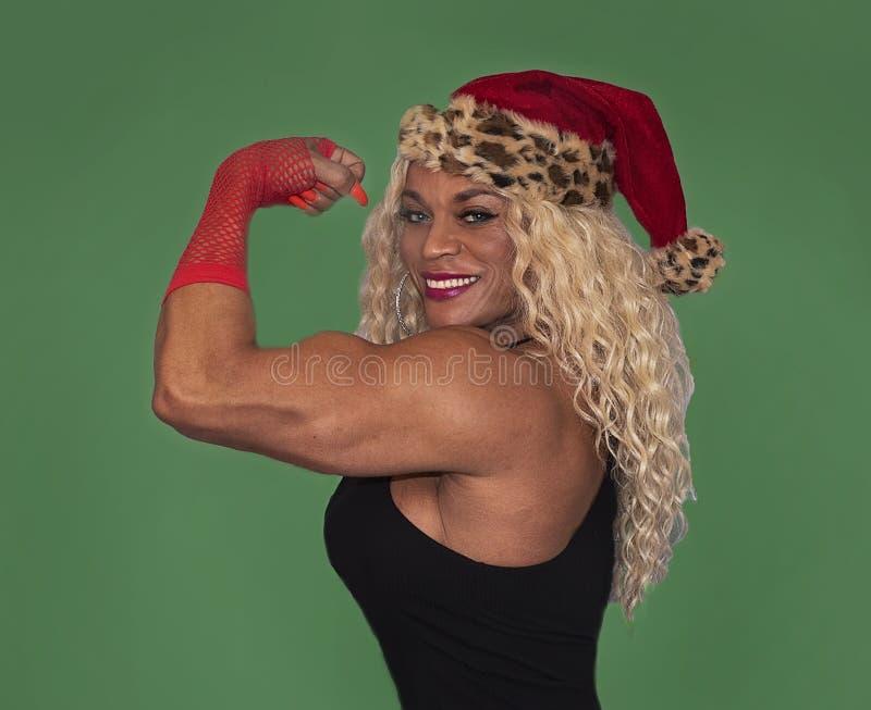 Η Kim Buck είναι στιλβωμένος αρωγός Santa ` s στοκ φωτογραφία με δικαίωμα ελεύθερης χρήσης