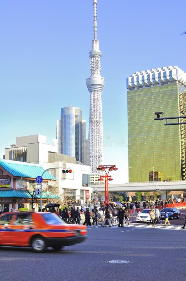 θάλαμος δέντρων πύργων του Τόκιο sumida ουρανού της Ιαπωνίας στοκ εικόνα με δικαίωμα ελεύθερης χρήσης