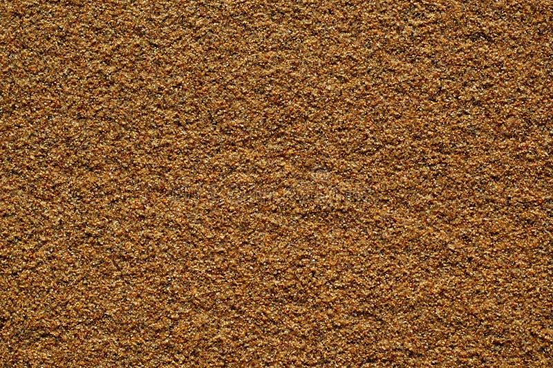 θάλασσα άμμου υγρή στοκ φωτογραφίες με δικαίωμα ελεύθερης χρήσης