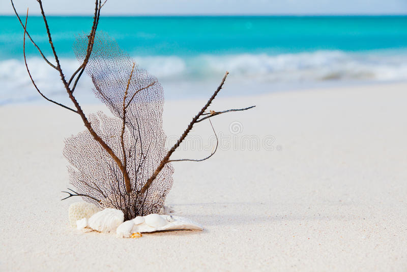 θάλασσα έννοιας παραλιών στοκ εικόνα με δικαίωμα ελεύθερης χρήσης