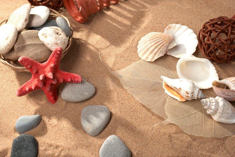 θάλασσα ζωής ακόμα στοκ φωτογραφίες