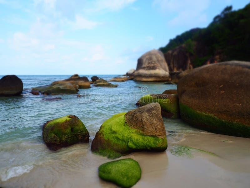 Θάλασσα και βράχοι, Koh Samui, Ταϊλάνδη στοκ εικόνα