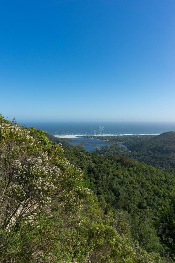 Θάμνος Fynbos με την άποψη ωκεανών και λιμνοθαλασσών και τα δασικά βουνά στοκ φωτογραφίες με δικαίωμα ελεύθερης χρήσης