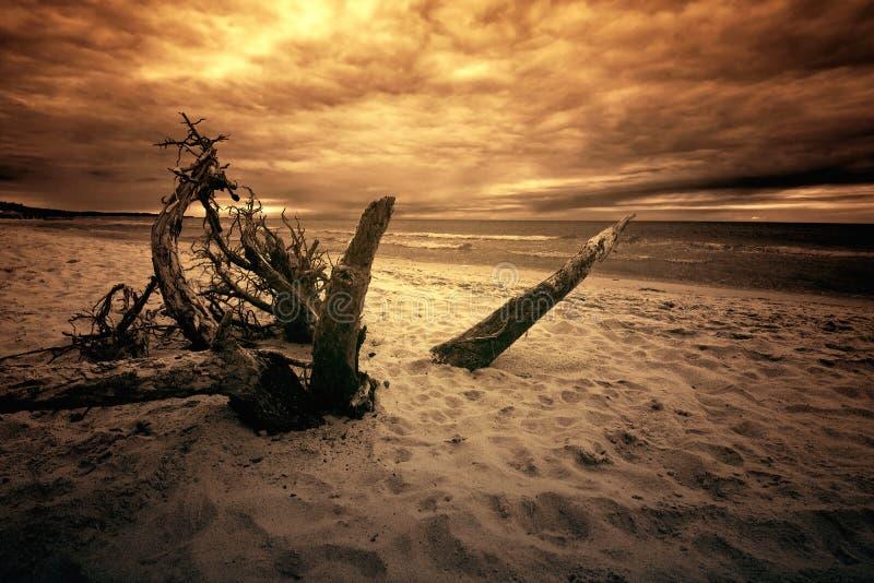 Θάλασσα και ωκεανός στοκ φωτογραφίες