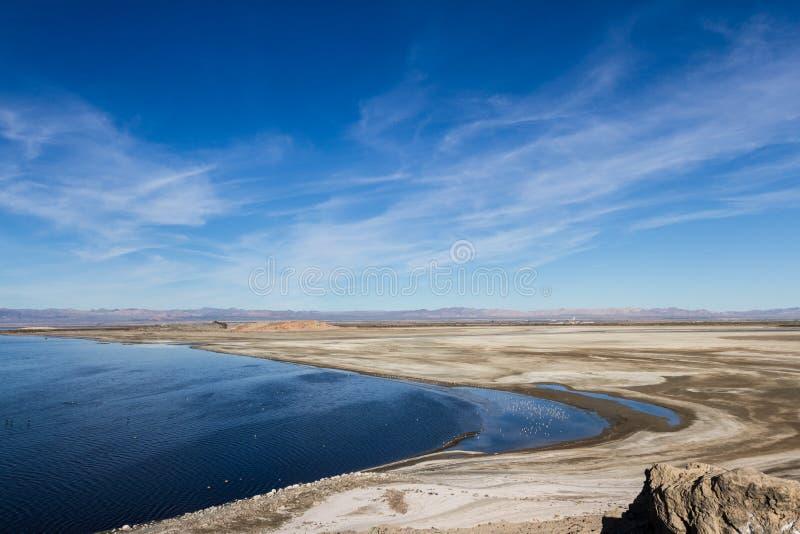 Θάλασσα Salton στοκ εικόνες