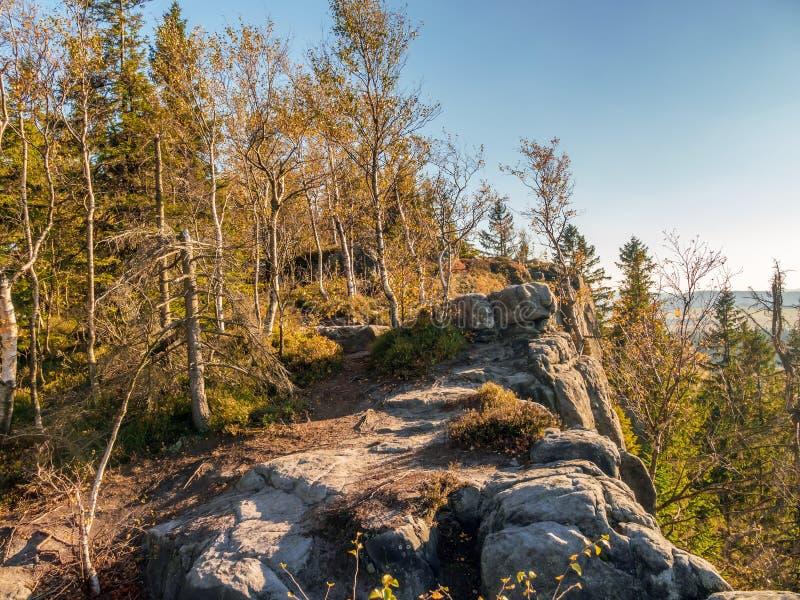 Θέα αριό τη γωνία Kloof στο Table Mountain National Park, Πολωνία στοκ εικόνα με δικαίωμα ελεύθερης χρήσης