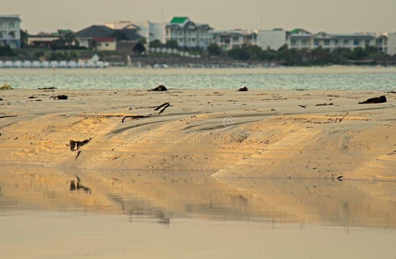 Θέρετρα κοκοφοινίκων Cayo πέρα από το εκτεθειμένο χαμηλό φράγμα άμμου σε εκβολή ποταμού παλίρροιας στοκ εικόνες