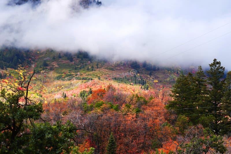 Θέρετρο βουνών Sundance Όμορφα χρώματα πτώσης δέντρων στοκ φωτογραφία με δικαίωμα ελεύθερης χρήσης