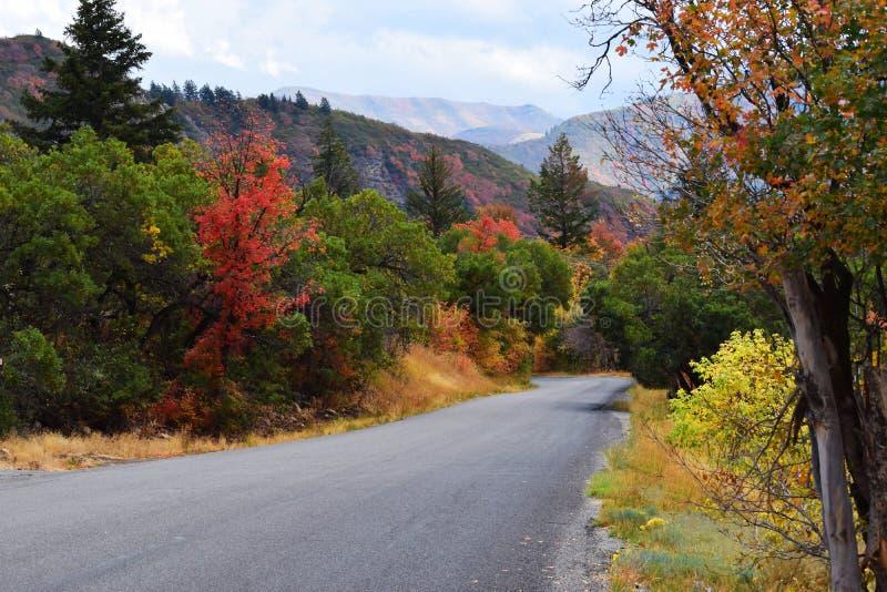 Θέρετρο βουνών Sundance Όμορφα χρώματα πτώσης δέντρων στοκ φωτογραφία