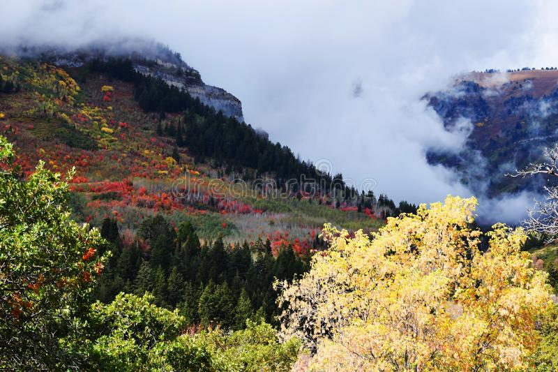 Θέρετρο βουνών Sundance Όμορφα χρώματα πτώσης δέντρων στοκ εικόνες με δικαίωμα ελεύθερης χρήσης