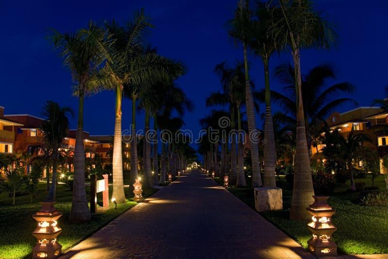 θέρετρο νύχτας του Μεξικ&om στοκ φωτογραφία με δικαίωμα ελεύθερης χρήσης