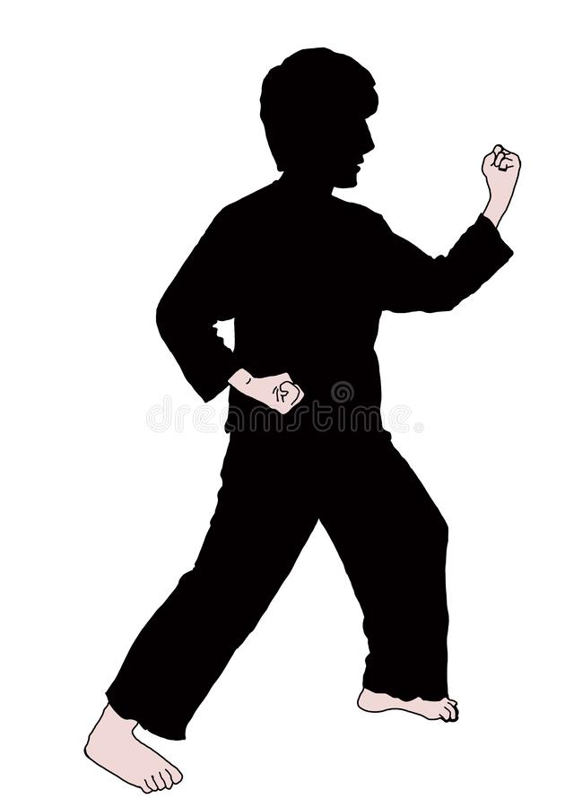 Θέση και τεχνική karate στοκ φωτογραφία με δικαίωμα ελεύθερης χρήσης
