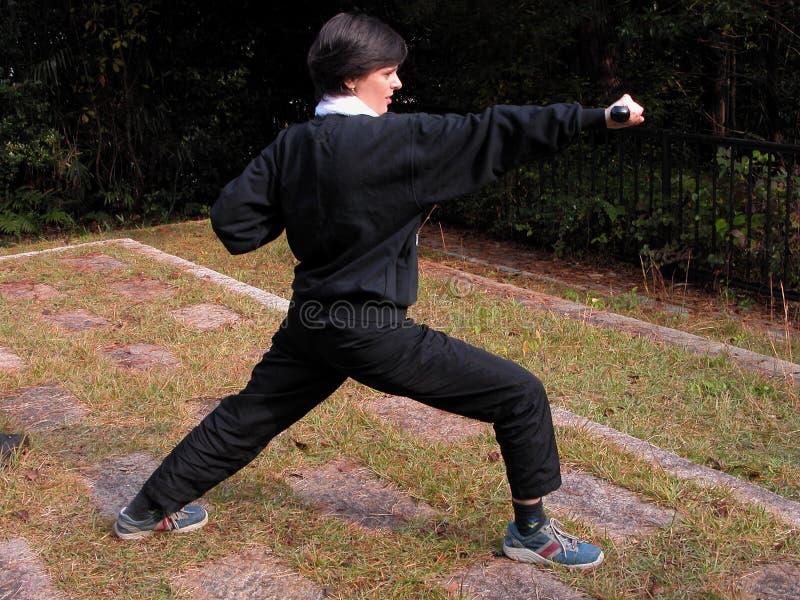 θέση πάλης στοκ εικόνα με δικαίωμα ελεύθερης χρήσης