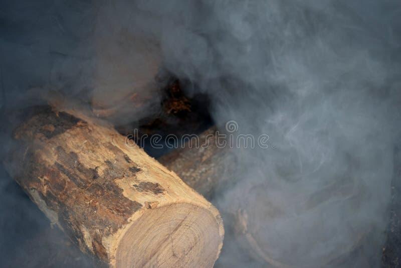 Θέτοντας πυρκαγιά με το καυσόξυλο πεύκων στοκ φωτογραφία με δικαίωμα ελεύθερης χρήσης