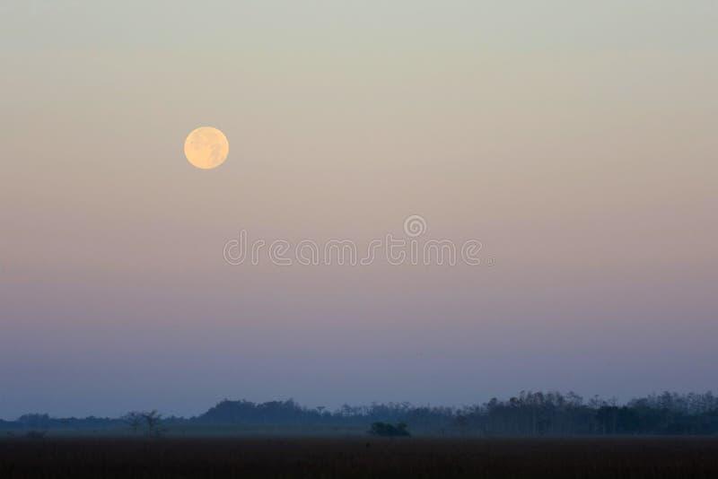 Θέτοντας φεγγάρι, εθνικό πάρκο Everglades στοκ φωτογραφίες με δικαίωμα ελεύθερης χρήσης