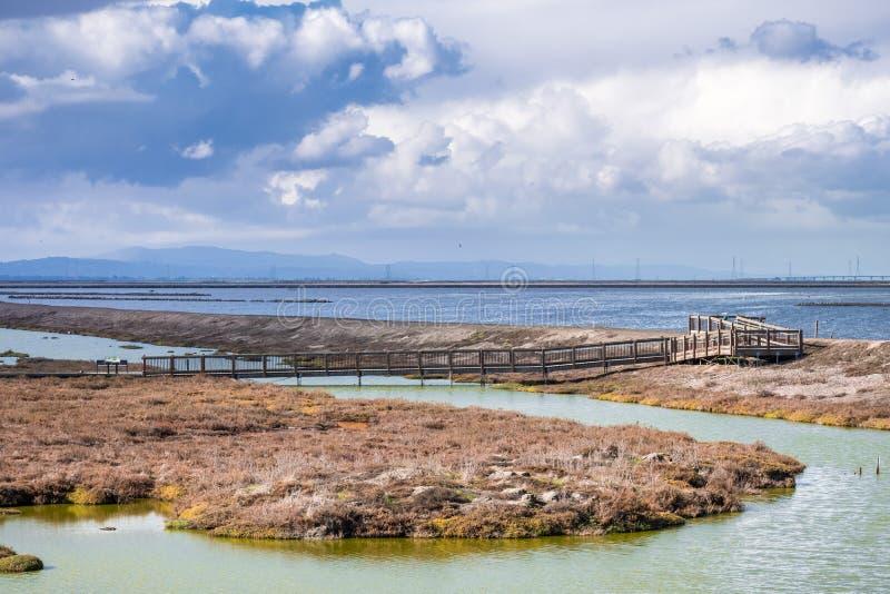 Θαλάσσιος περίπατος που διασχίζει τις αλατισμένα λίμνες και τα έλη του έλους Alviso στοκ εικόνες με δικαίωμα ελεύθερης χρήσης