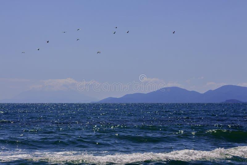 Θαλάσσιο τοπίο μέσω του μπλε νερού στις σκιαγραφίες των λόφων και των πουλιών βουνών που πετούν πέρα από τη θάλασσα στοκ εικόνες με δικαίωμα ελεύθερης χρήσης