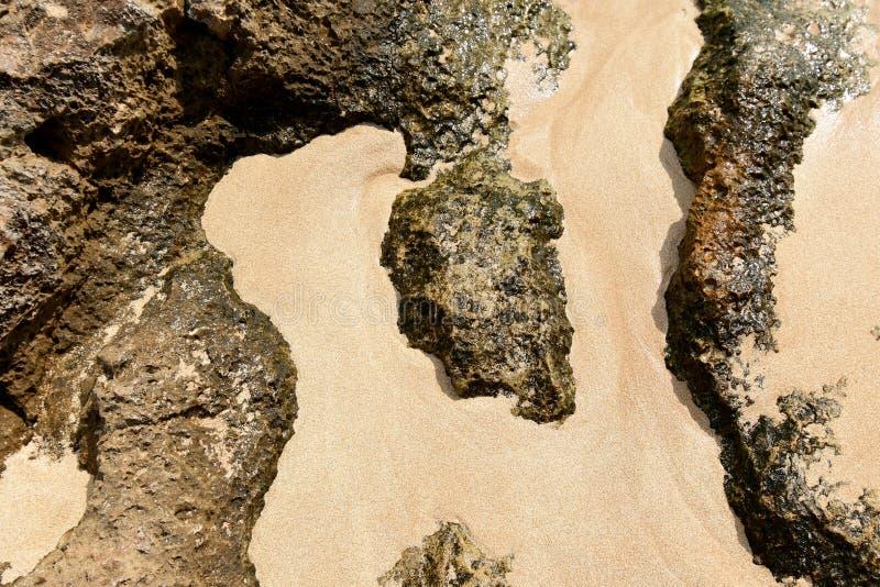 Θαμμένοι στην άμμο αυτοί οι υπέροχοι Ροκ σχηματισμοί στοκ εικόνα