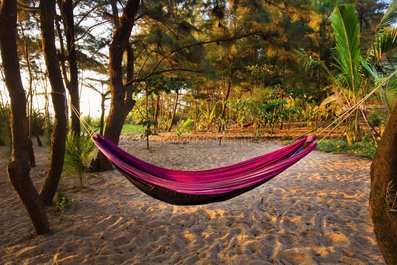 Θαυμάσια αιώρα στην ειδυλλιακή νότια Ινδία κοντά σε Goa στοκ εικόνες με δικαίωμα ελεύθερης χρήσης