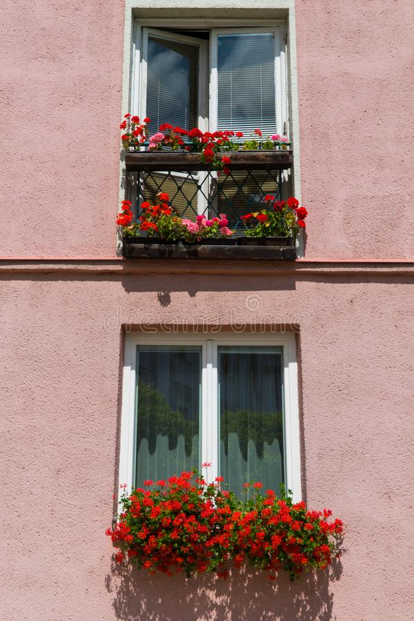 θαυμάσια θέση Βενετία της Ιταλίας νησιών αρμονίας burano Παραδοσιακοί ζωηρόχρωμοι τοίχοι και παράθυρα με τα φωτεινά ρόδινα παραθυ στοκ εικόνες
