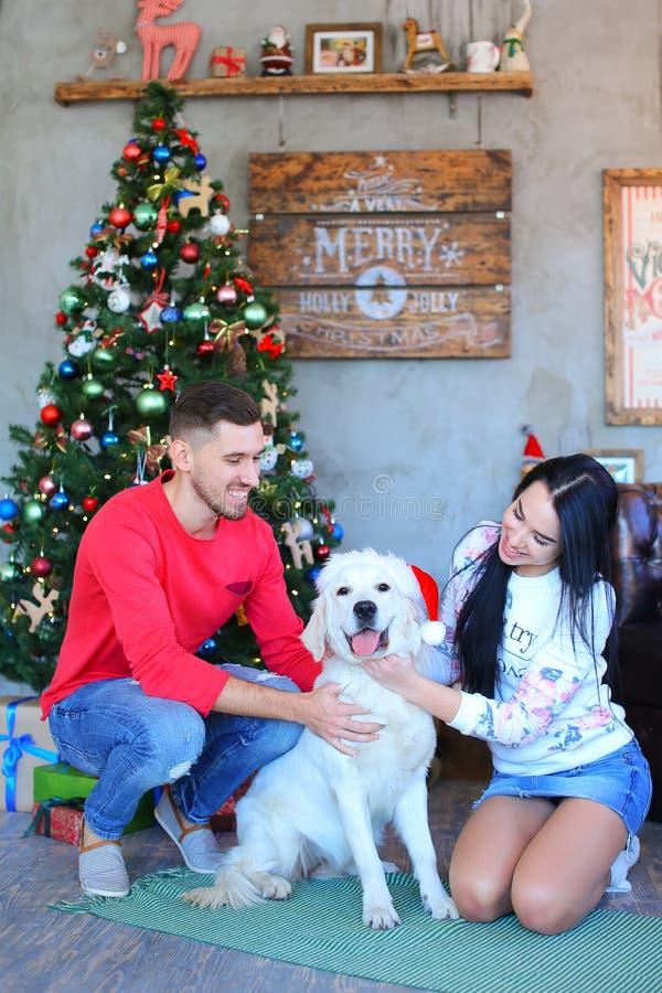 Θαυμάσιο νέο ζεύγος που χαμογελά και που παίζει με το σκυλί στο καπέλο santa στοκ φωτογραφίες με δικαίωμα ελεύθερης χρήσης