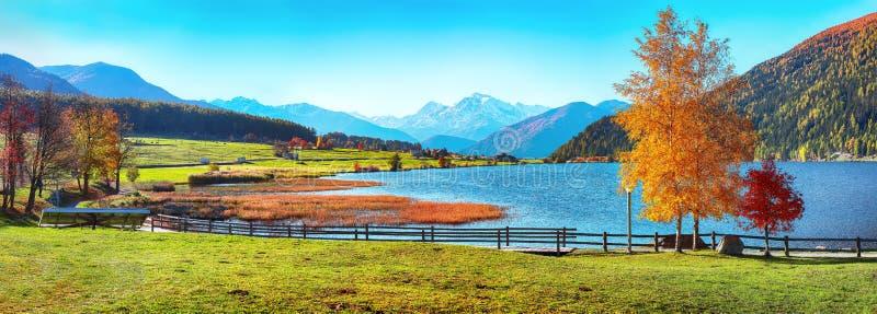 Θαυμάσιο φθινοπωρινό πανόραμα της λίμνης Haidersee Lago della Muta με κορυφή Ortler στο παρασκήνιο στοκ φωτογραφία με δικαίωμα ελεύθερης χρήσης