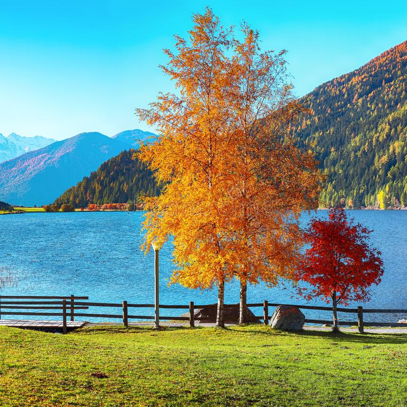Θαυμάσιο φθινοπωρινό πανόραμα της λίμνης Haidersee Lago della Muta με κορυφή Ortler στο παρασκήνιο στοκ εικόνες